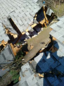 Roof Damage (1)