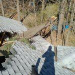 Roof Damage (2)