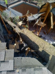 Roof Damage (3)